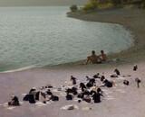 L'Inconnu du Lac : peinture et politique