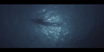Le Bon Plan : la scène d'introduction des Dents de la Mer