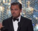 Oscars 2016 : Spotlight, 2 statuettes dont celle du meilleur film