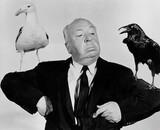La fausse préquelle des Oiseaux, le film culte d'Alfred Hitchcock