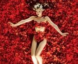 Mena Suvari nue dans les pétales de roses d'American Beauty