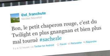 Micro-critiques : Le Chaperon Rouge, Detective Dee, Source Code...