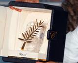 Festival de Cannes 2011 : le palmarès complet