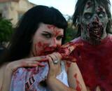 Zombie Walk 2011 : toutes les infos !