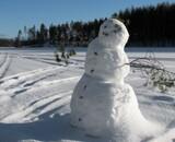 Martin Scorsese adaptera The Snowman