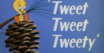 Que deviennent les comptes Twitter des films qui ne sont plus à l'affiche ?