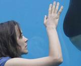 Cannes 2012 : les films français en compétition
