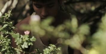 Cannes 2012 : Où voir les films cannois sans passer par la Croisette