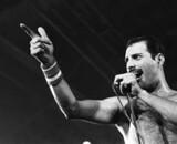 Le biopic de Freddie Mercury réalisé par Tom Hooper ?