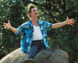 Jim Carrey rempile avec le réalisateur d'Ace Ventura 2