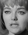 Diane Sayer