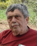 Micha Shagrir
