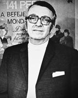 Zoltan Fabri