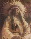 Chief Thunderbird