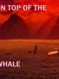Le Toit de la baleine