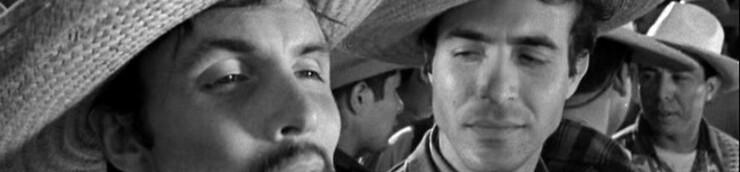 Le Western, ses spécialistes : Anthony Mann