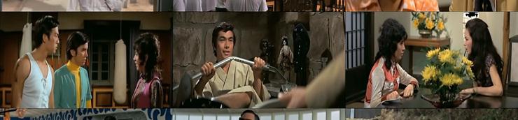 Titres VF incroyables (voire racistes) de films de kung-fu !