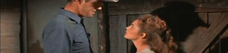 Les meilleurs westerns de Richard Bartlett