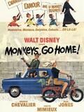 Rentrez chez vous, les singes !