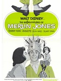 Les Mésaventures de Merlin Jones
