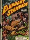 La ruée sauvage des éléphants