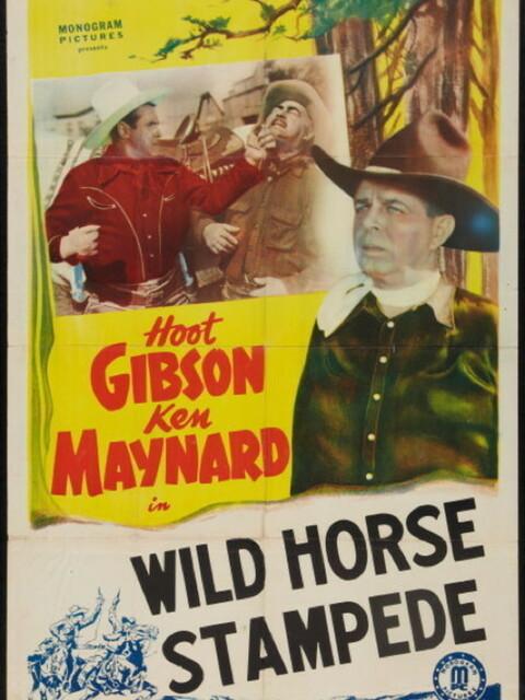 Wild Horse Stampede