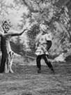 Le Rêve du Radjah ou la Forêt enchantée