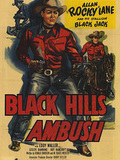 Black Hills Ambush