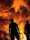 Wild Fire - Les flammes de l'enfer