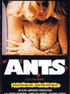 Ants (Les Fourmis)