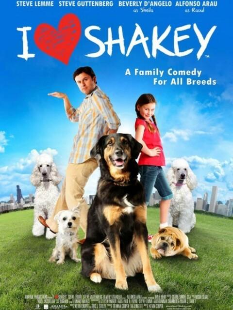 Shakey, un amour de chien