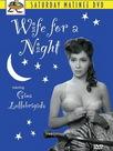 Une femme pour une nuit