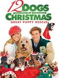 Les 12 chiens de Noël 2