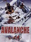 Danger Avalanche !