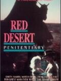 Red Desert Penitentiary