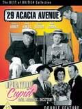 29 Acacia Avenue