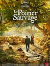 Le Poirier sauvage