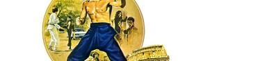 Bruce Lee, mon Top 5