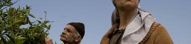 Film israelo-palestinien : société, politique, conflit