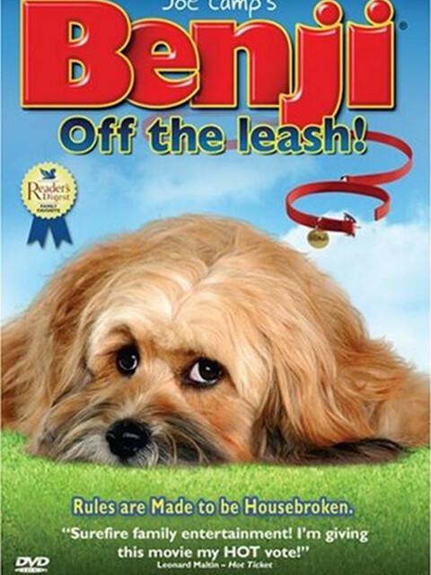 Benji: off the leash !