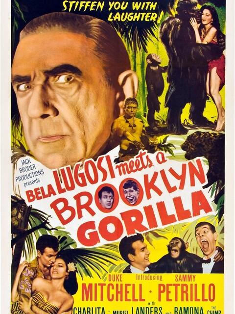 Le Gorille de Brooklyn
