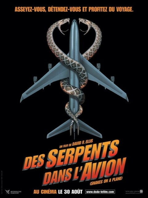 Des Serpents dans l'avion