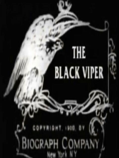 The Black Viper