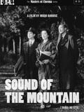 La Voix dans la montagne