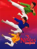 Les 3 ninjas contre-attaquent