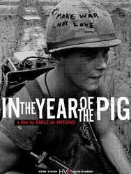 Vietnam, année du cochon