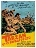 Tarzan et le safari perdu
