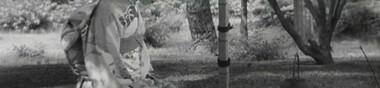 La fantastique année 1951 du Cinéma japonais 日本映画