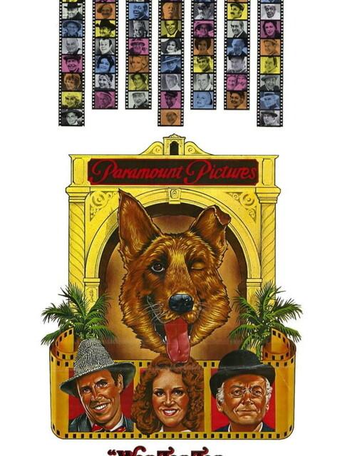 Won Ton ton  le chien qui sauva Hollywood