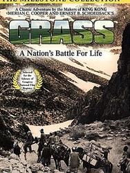 Grass, lutte d'un peuple pour la vie